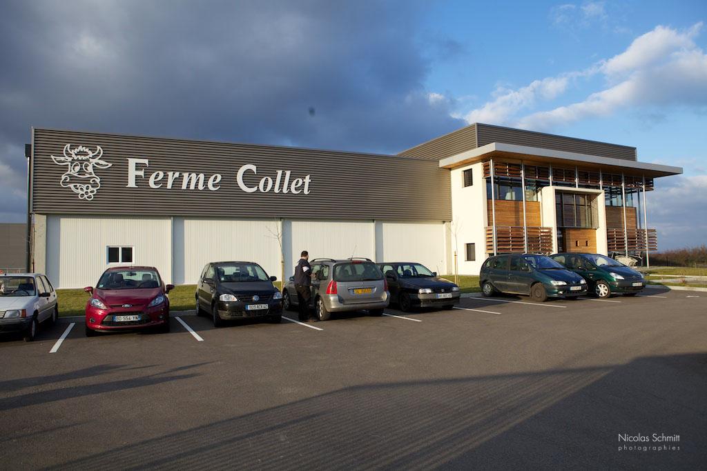 FERME-COLLETIMG_5250