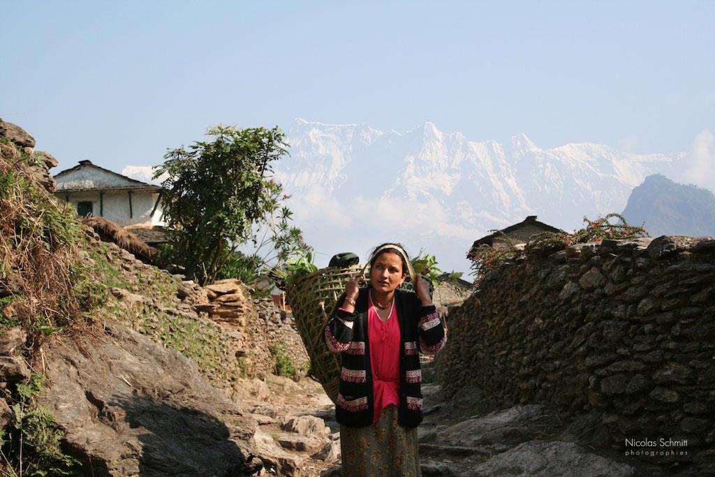 PLANETE0699i, sur le chemin des altitudes - himalaya 2005 (147)